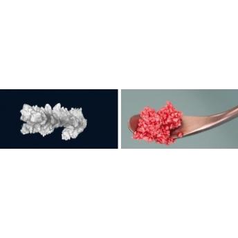 NanoBone® | granulat